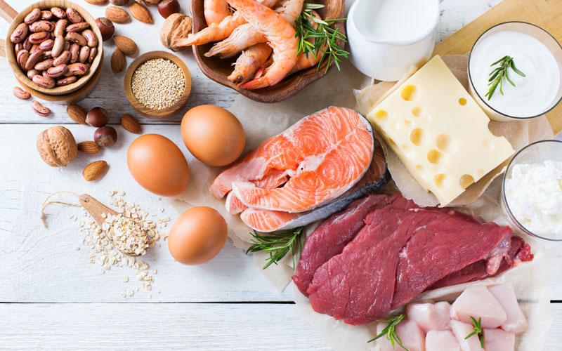 A white background shows a spread of various animal sources of vitamin B12: meat, fish, eggs, and dairy products